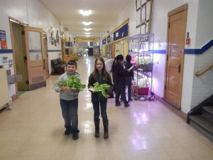 Two students holding hydroponic lettuce